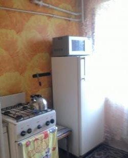 Снять квартиру на Новый год в Днепропетровске: цены и условия (фото) - фото 3