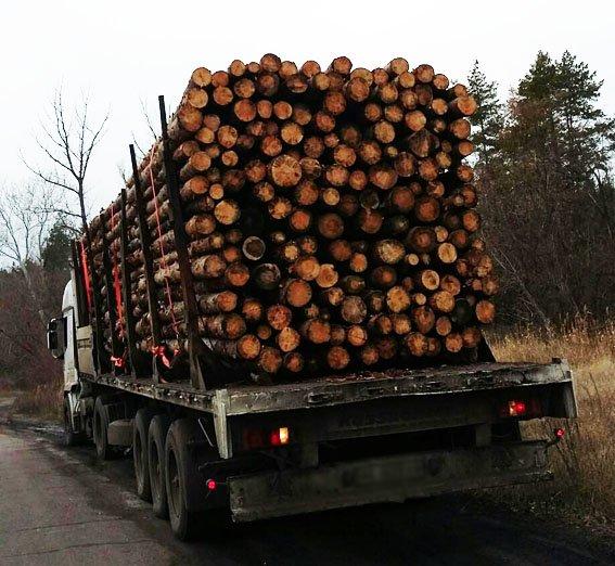 На блокпостах Донецкой области пресечены нелегальные перевозки металла и древесины (фото) - фото 4