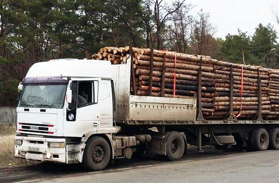 Правоохранители Мариуполя пресекли нелегальные перевозки  древесины (ФОТО) (фото) - фото 1