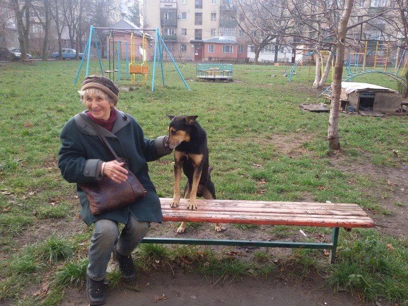 """Франківчанка, викликала """"ЄРЦ"""", щоб забрати собачу будку з двору (ФОТО), фото-2"""