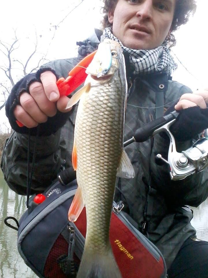 риба 2