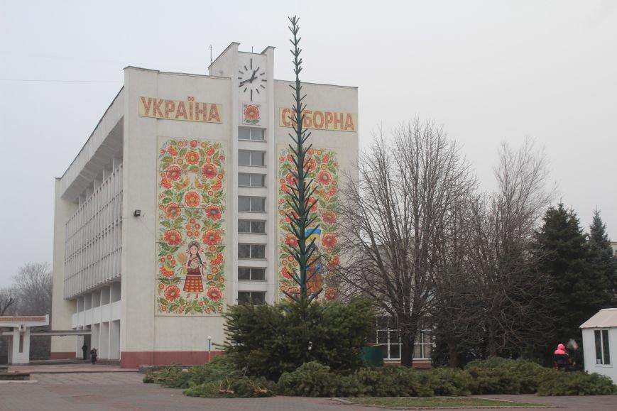 В Днепродзержинске начали собирать главную елку города, фото-1