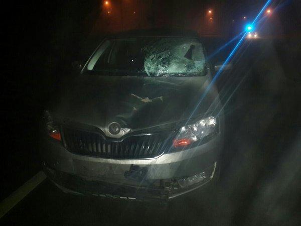 На вулиці Городоцькій водій іномарки збив пішохода (ФОТО) (фото) - фото 1