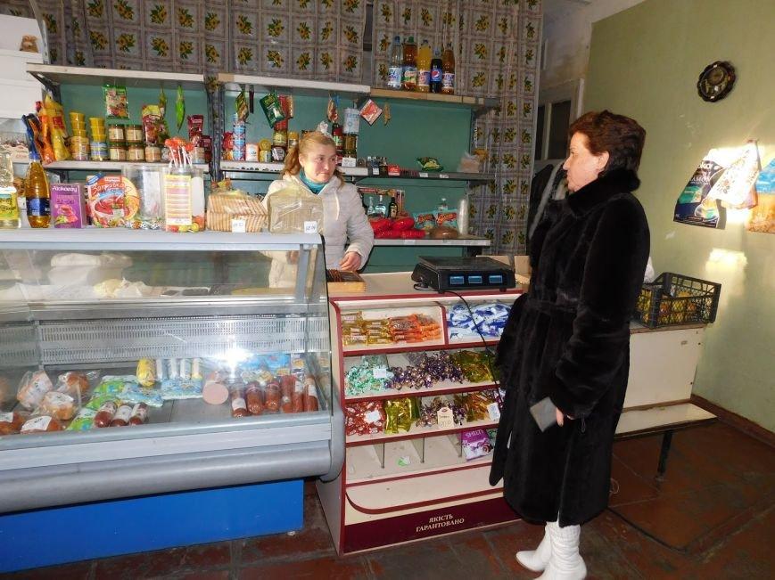 Председатель Добропольского районного совета посетила бюджетные учреждения  с.Шевченко (фото) - фото 1