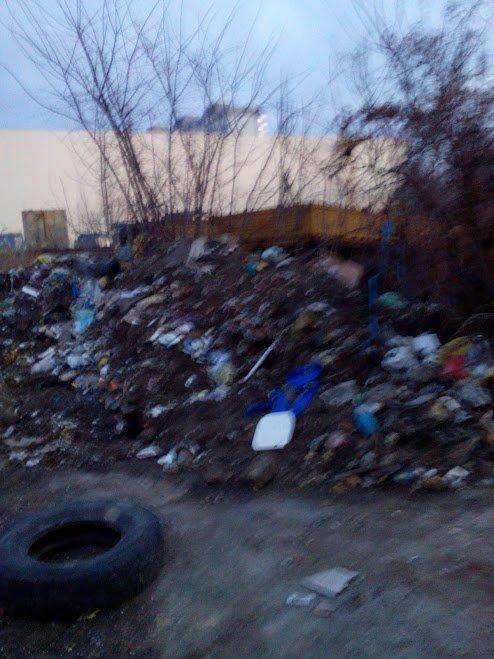 Одесса встречает приезжих кучами мусора (ФОТО) (фото) - фото 1