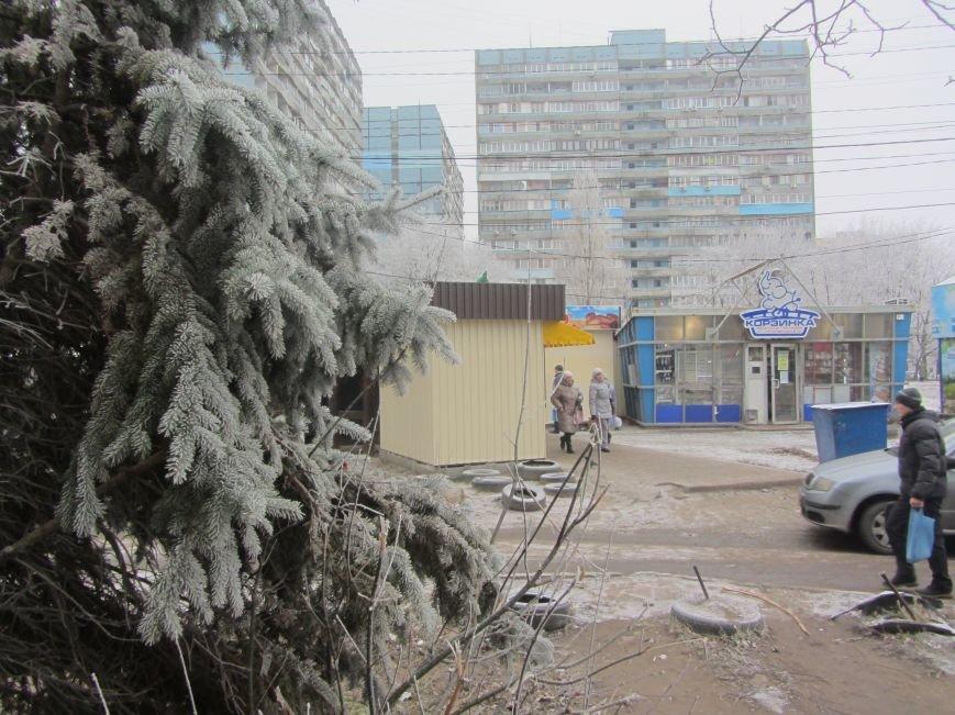 Днепропетровск припорошило снегом (ФОТО), фото-1