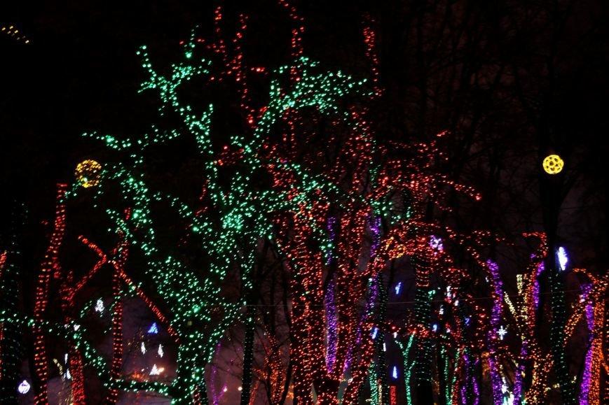 В Днепропетровске появится энергосберегающая новогодняя елка (ФОТО), фото-2