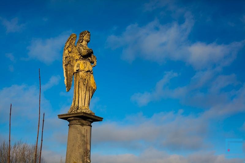 В Гродно активисты добиваются включения старого кладбища в список памятников (фото) - фото 11