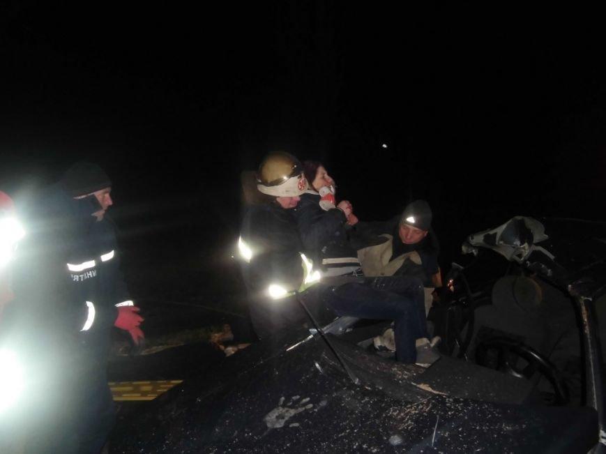 В Киевской области дерево рухнуло на автомобиль с людьми (ФОТО) (фото) - фото 4