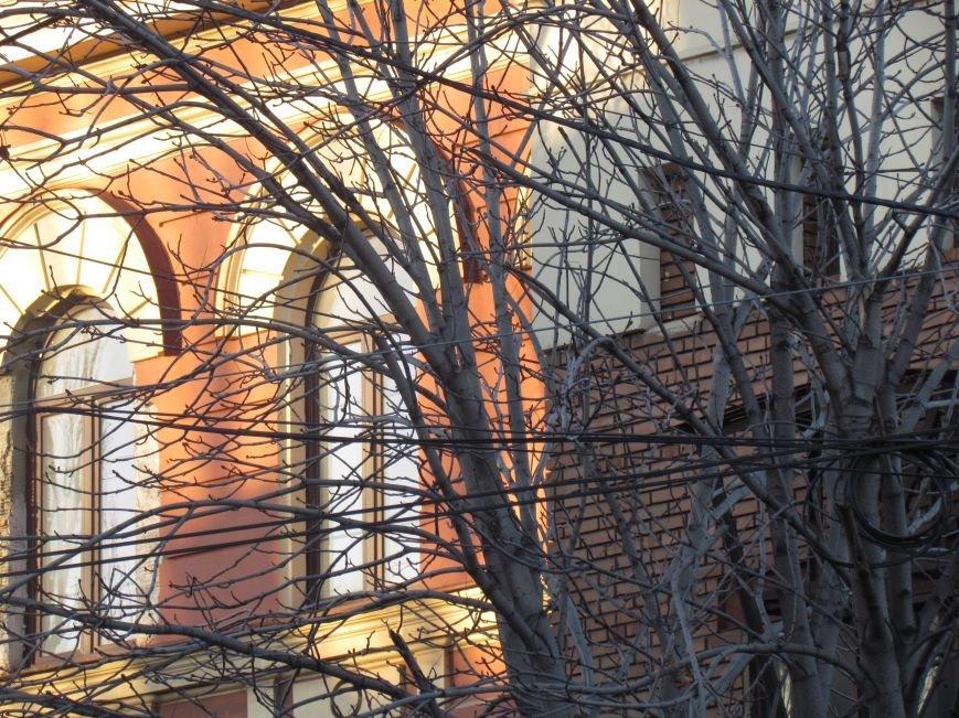 На проспекте Ленина в Мариуполе исчез электростолб. Провода зависли на деревьях (ФОТО), фото-3