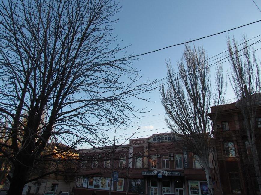 На проспекте Ленина в Мариуполе исчез электростолб. Провода зависли на деревьях (ФОТО), фото-1