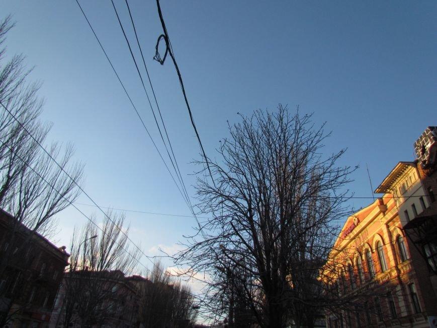На проспекте Ленина в Мариуполе исчез электростолб. Провода зависли на деревьях (ФОТО), фото-2