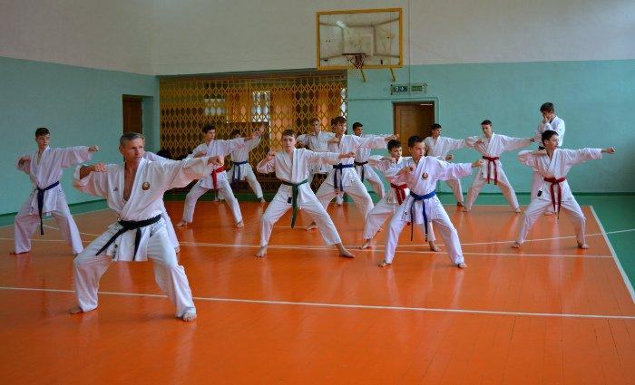 67 новополоцких каратистов повысили свою квалификацию, фото-1