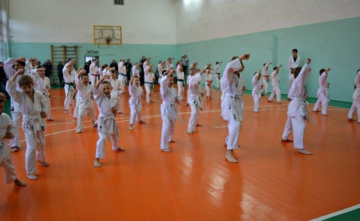 67 новополоцких каратистов повысили свою квалификацию, фото-9