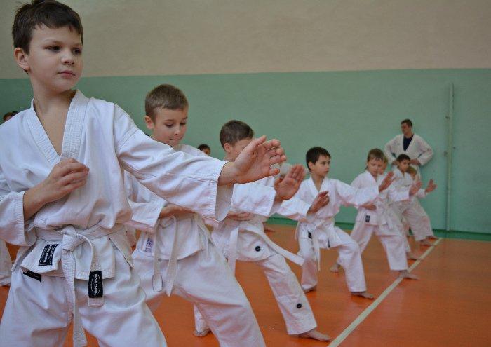 67 новополоцких каратистов повысили свою квалификацию, фото-11