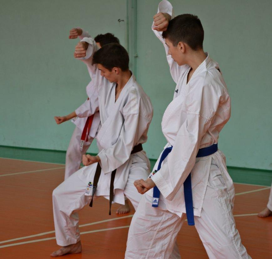 67 новополоцких каратистов повысили свою квалификацию, фото-5