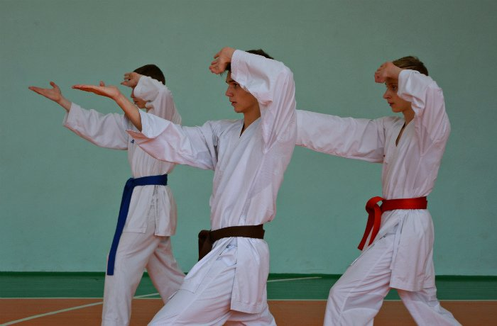 67 новополоцких каратистов повысили свою квалификацию, фото-4