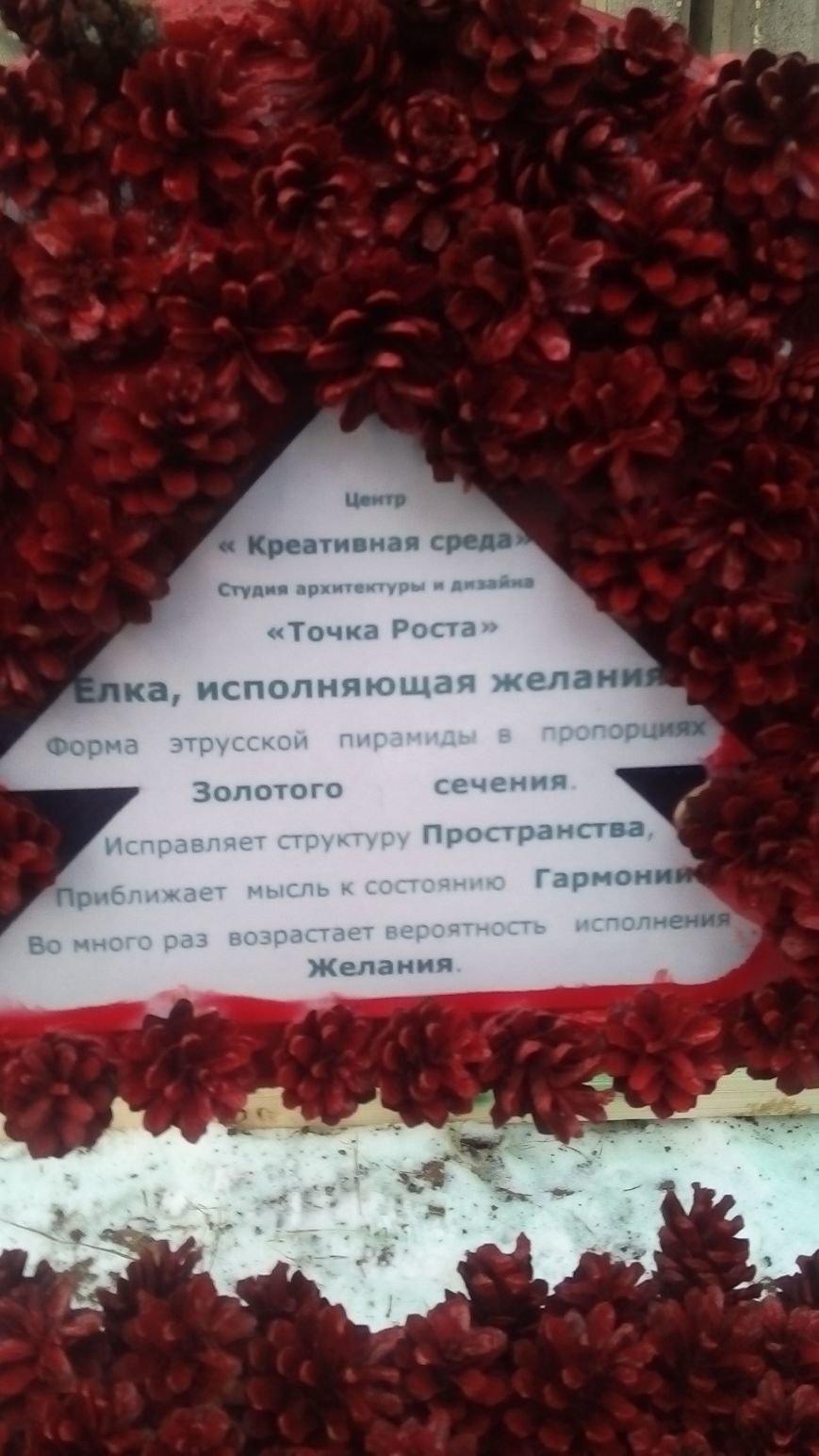 В новой Москве на улицах Троицка появились необычные елки (ФОТО), фото-2