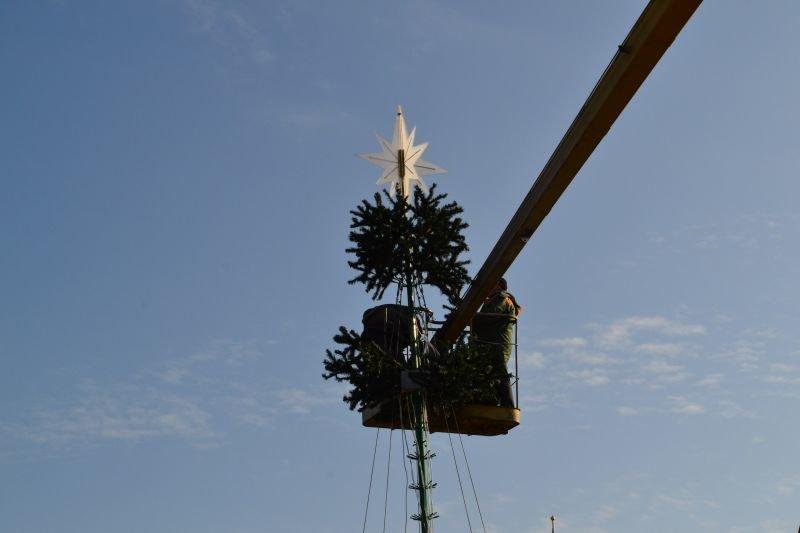 В Измаиле приступили к установке главной городской елки (ФОТО) (фото) - фото 1