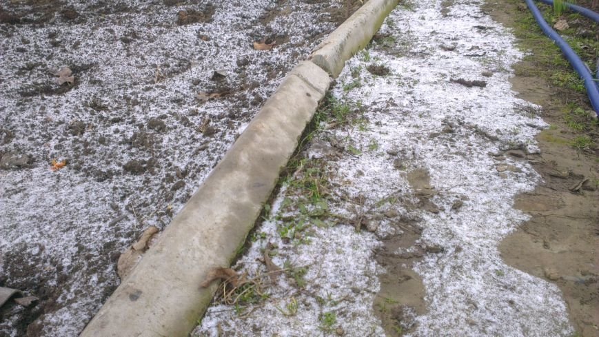 На юге Одесской области метет снег (ФОТО) (фото) - фото 1