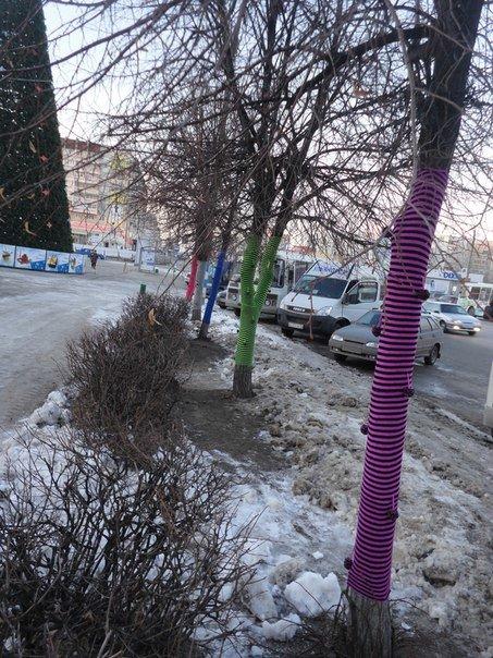 Ульяновские ярнбомберы утепляют деревья шарфами и гетрами, фото-2