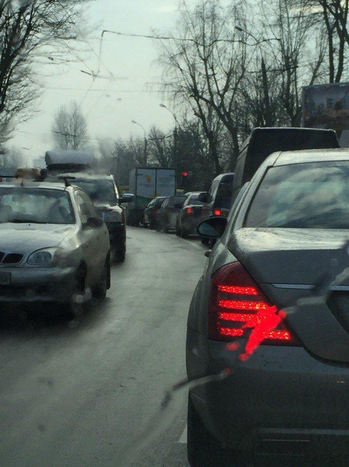 У Львові утворилися затори через зрізку дерев (ФОТО) (фото) - фото 1