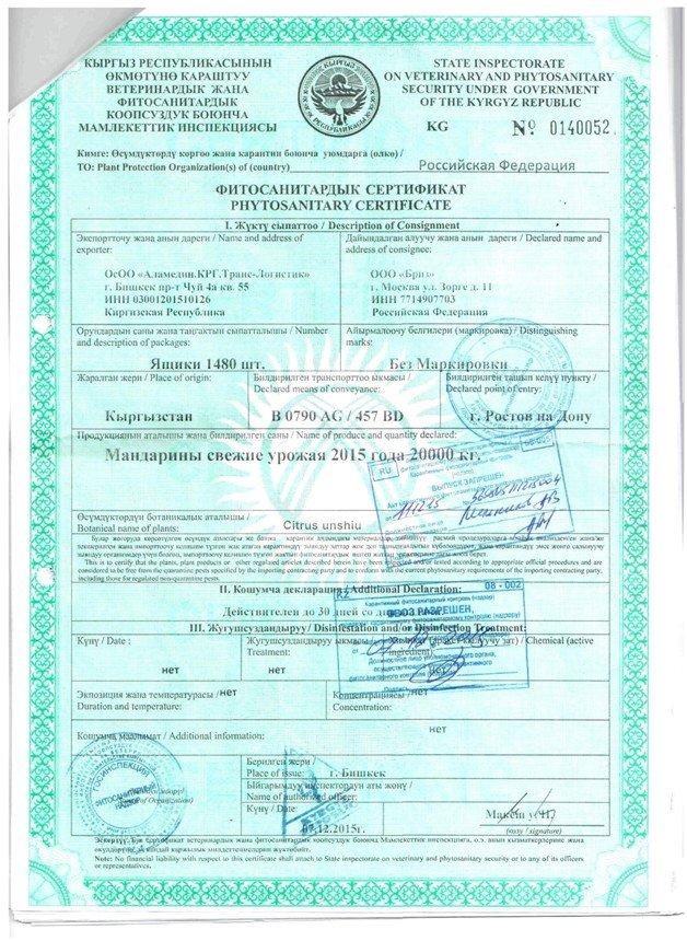 Через Ростов в Россию хотели ввести 40 тонн нелегальных мандаринов (фото) - фото 2