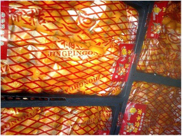 Через Ростов в Россию хотели ввести 40 тонн нелегальных мандаринов (фото) - фото 1