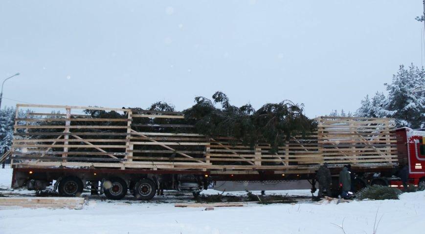 Российский Дед Мороз отправил в Симферополь столетнюю новогоднюю елку и сам собирается посетить столицу Крыма (ФОТО) (фото) - фото 2