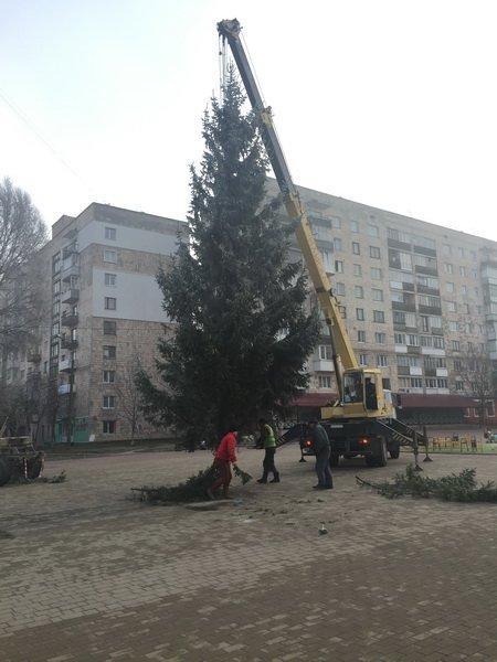 У Тернополі на бульварі Данила Галицького встановили новорічну красуню (фото) (фото) - фото 1