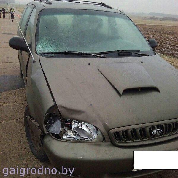 В Щучинском районе пожилую женщину насмерть сбил автомобиль: она шла по проезжей части в темное время суток (фото) - фото 3