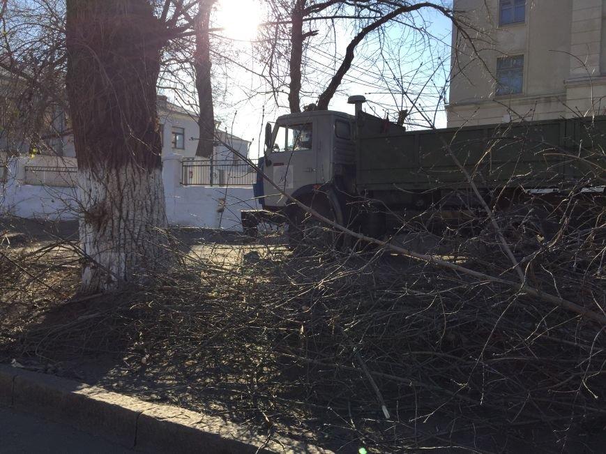 Николаевские коммунальщики разбросали по улицам спиленные ветки деревьев (ФОТОФАКТ) (фото) - фото 2