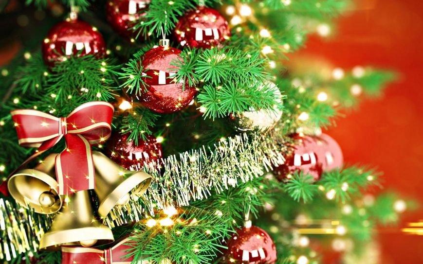 Новогодние елки в Днепропетровске: адреса продажи, цены и качество, фото-1