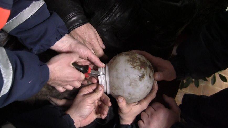 Новошахтинские спасатели освободили щенка из плена (фото) - фото 2