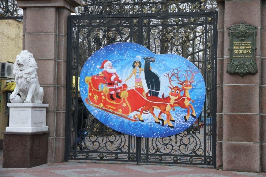 Ленинский район Николаева обзавелся новогодней красавицей (ФОТОРЕПОРТАЖ), фото-4