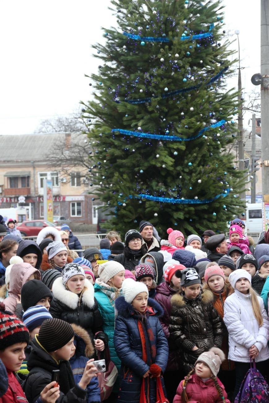 Ленинский район Николаева обзавелся новогодней красавицей (ФОТОРЕПОРТАЖ) (фото) - фото 12