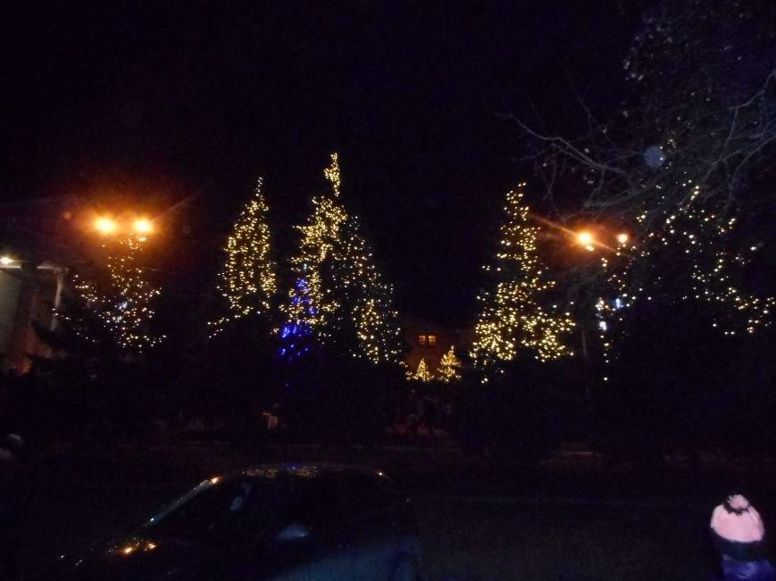 Торжественное открытие елки в городе Белицкое (фото) - фото 1