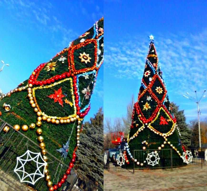В Макеевке установили главную городскую елку (фотофакт) (фото) - фото 1