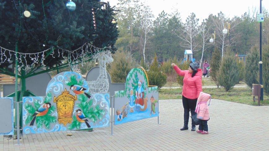 Веселые обезьянки появились в Мариуполе(ФОТОФАКТ) (фото) - фото 1
