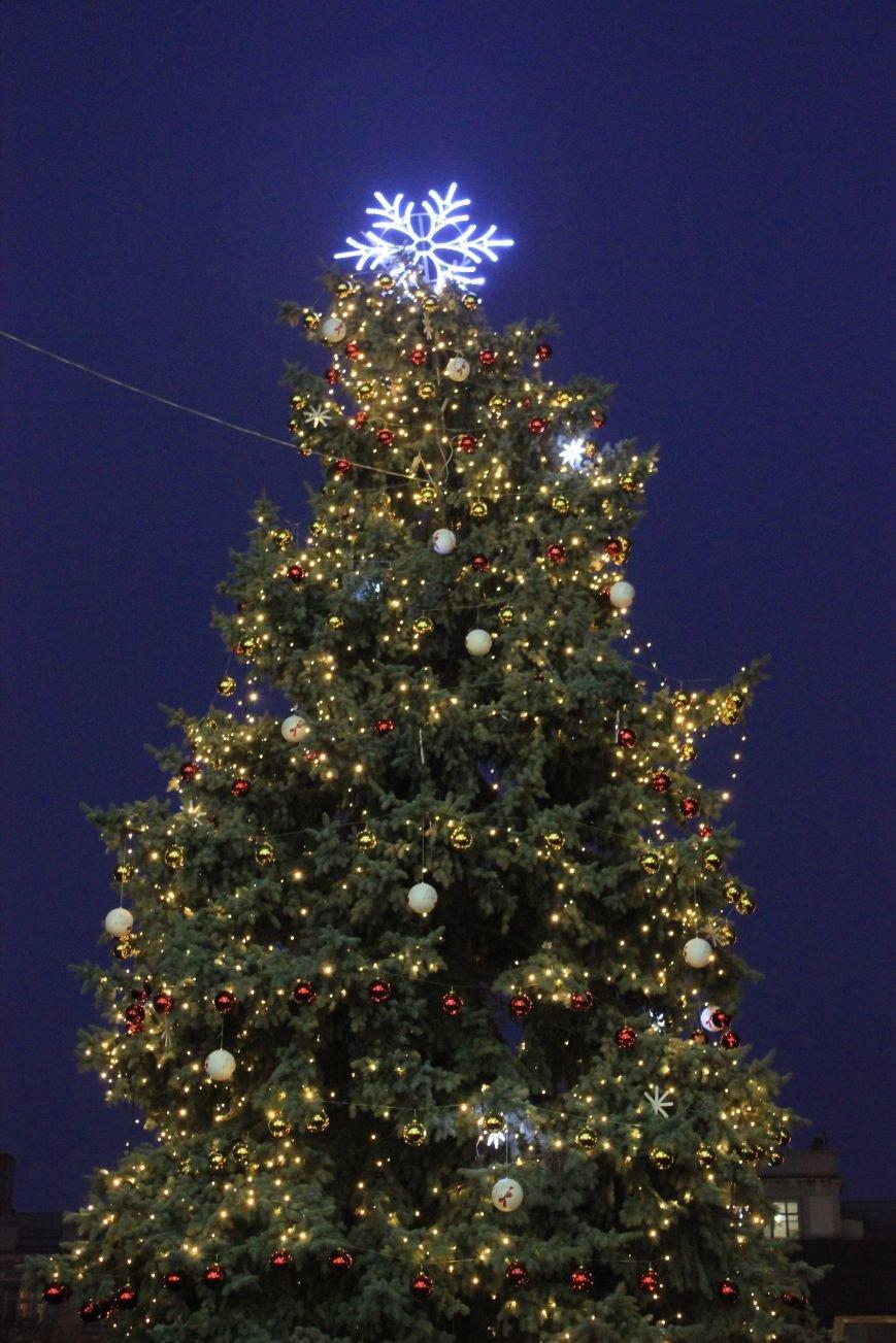 В Артемовске-Бахмуте предпраздничное настроение: на  центральной площади зажгли огни новогодней елки (ФОТОРЕПОРТАЖ), фото-15