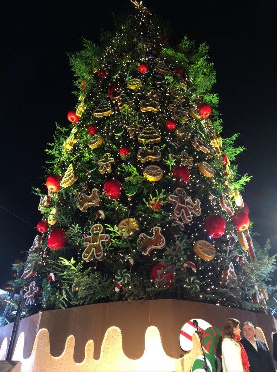 На Софийской площади открыли главную елку страны (ФОТО) (фото) - фото 1