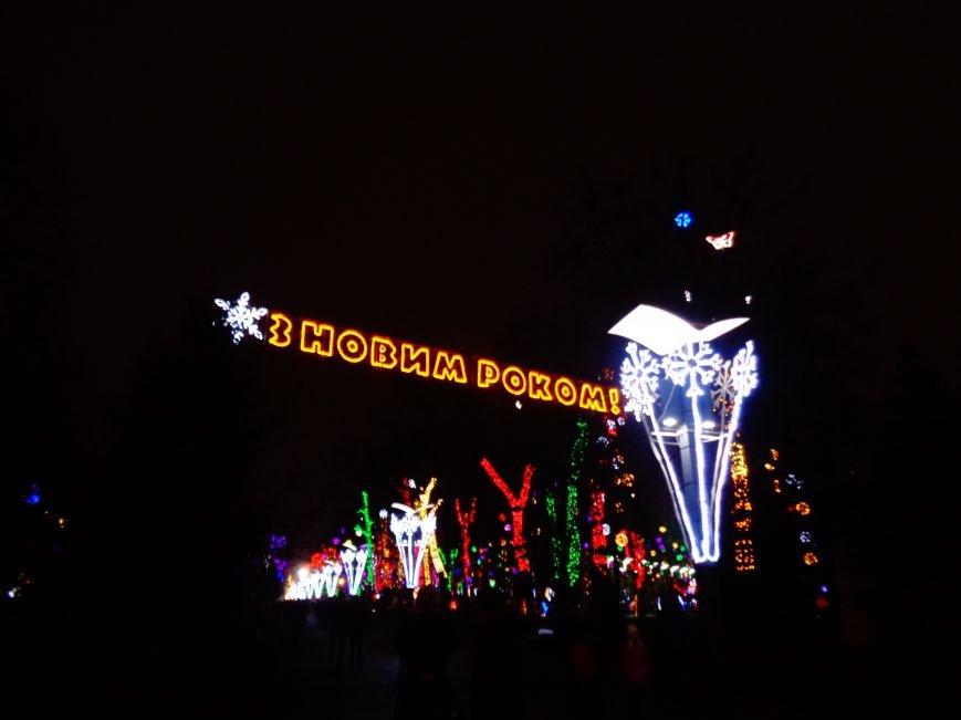 В Днепропетровске открылась областная ёлка (ФОТО, ВИДЕО) (фото) - фото 1