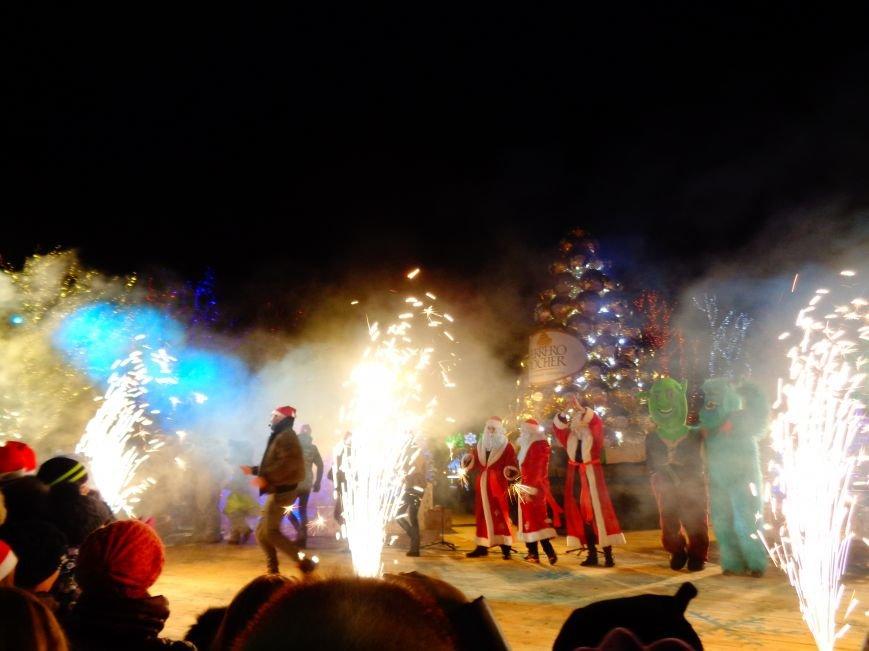 В Днепропетровске открылась областная ёлка (ФОТО, ВИДЕО) (фото) - фото 5
