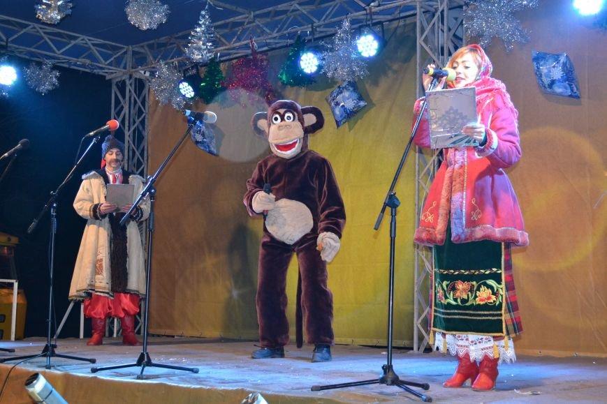 В Днепродзержинске открыли центральную новогоднюю ёлку, фото-10