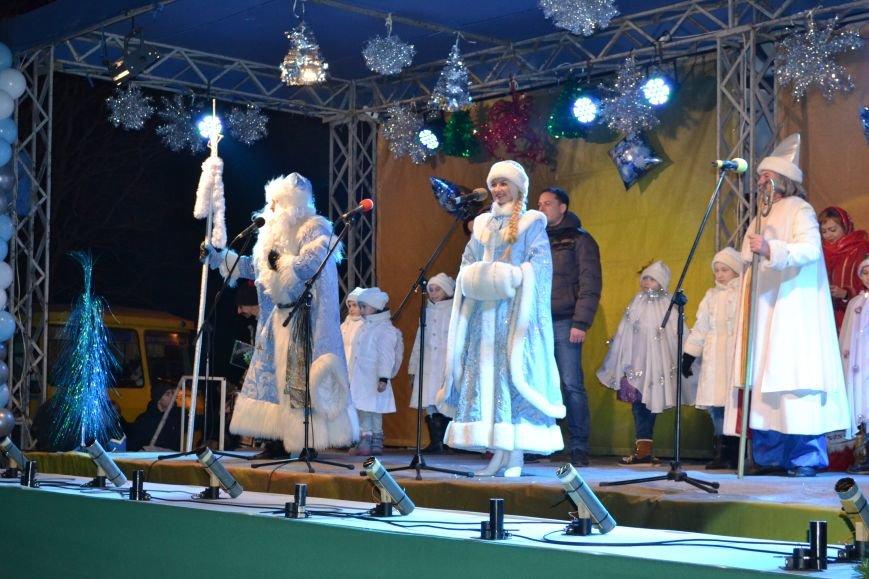 В Днепродзержинске открыли центральную новогоднюю ёлку, фото-24