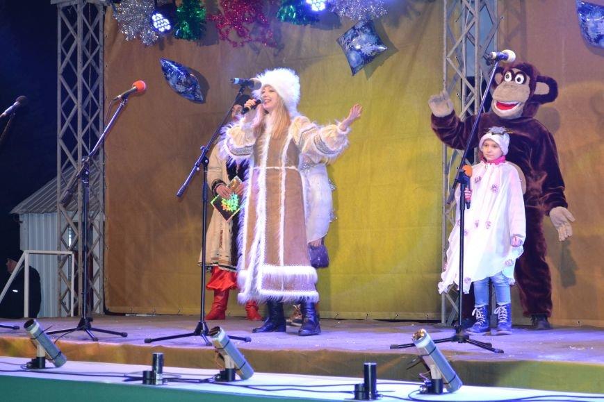 В Днепродзержинске открыли центральную новогоднюю ёлку, фото-16