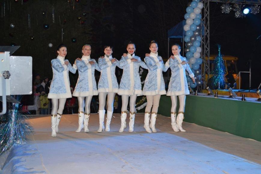В Днепродзержинске открыли центральную новогоднюю ёлку, фото-13