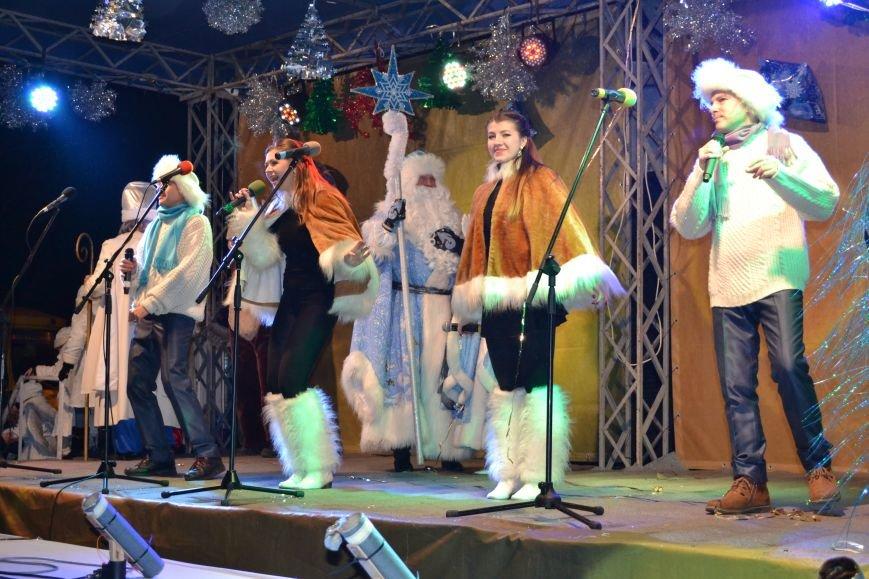 В Днепродзержинске открыли центральную новогоднюю ёлку, фото-29