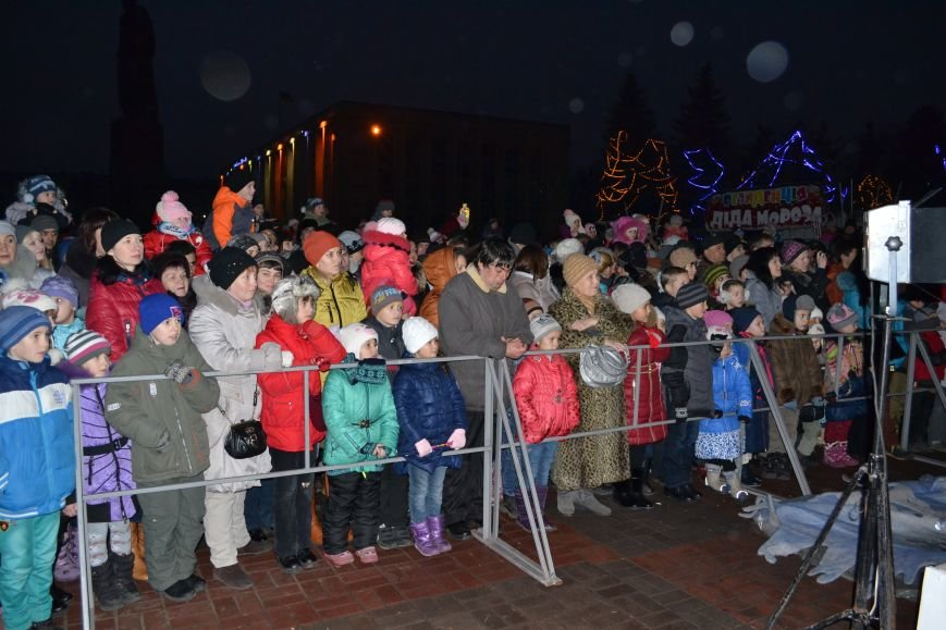 В Днепродзержинске открыли центральную новогоднюю ёлку, фото-4