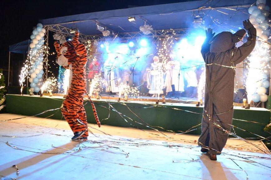 В Днепродзержинске открыли центральную новогоднюю ёлку, фото-26